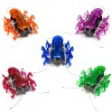Hexbug Ant (Random Color)