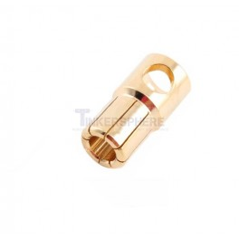 6mm Bullet Connector Male