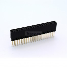 Extra Long 2x20 40 Pin Female Header