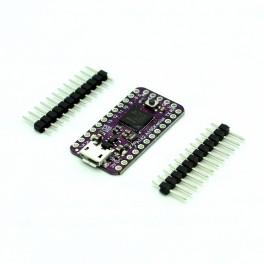 ATSAMD21 Cortex M0 Mini Breakout